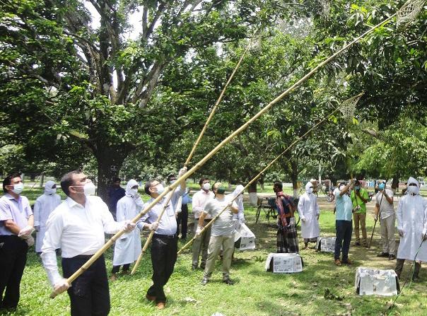 চাঁপাইনবাবগঞ্জে আমপাড়া উৎসব উদ্বোধন